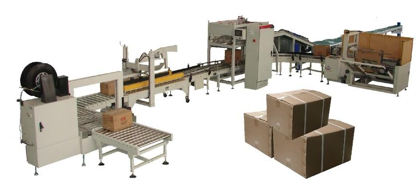 LB450-2 Case packer for pouch and bag